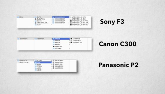 Camera Card Hierarchies: Sony, Canon, and Panasonic.