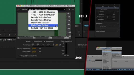 The de-esser, built into Adobe Premiere Pro, Avid Media Composer, and Apple FCP X.